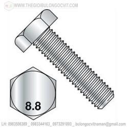 Bulong 8.8 M08x25